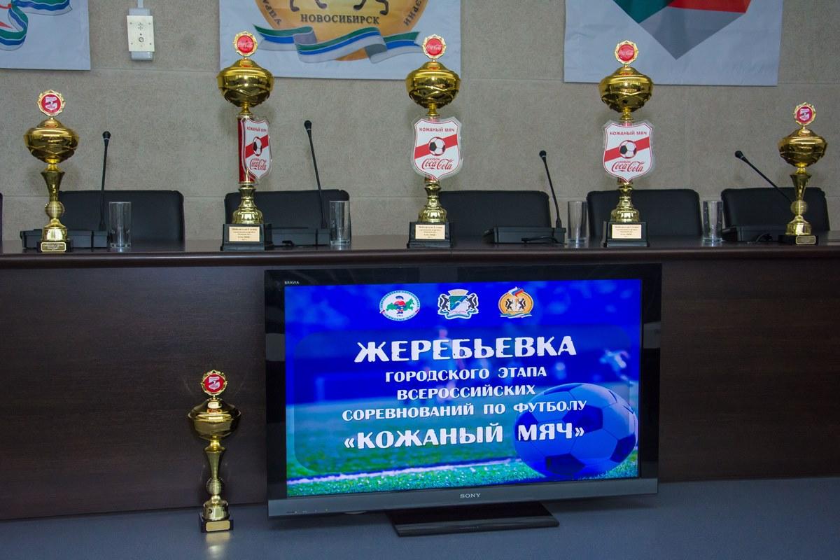 Дюсш по футболу новосибирск