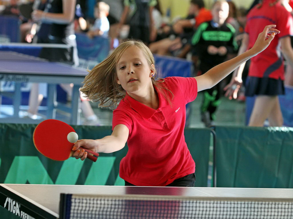 View the embedded image gallery online at: http://spartak-orekhovoru/item/445-badminton-13-po-15