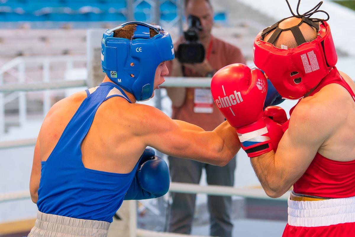 Фестиваль бокса.