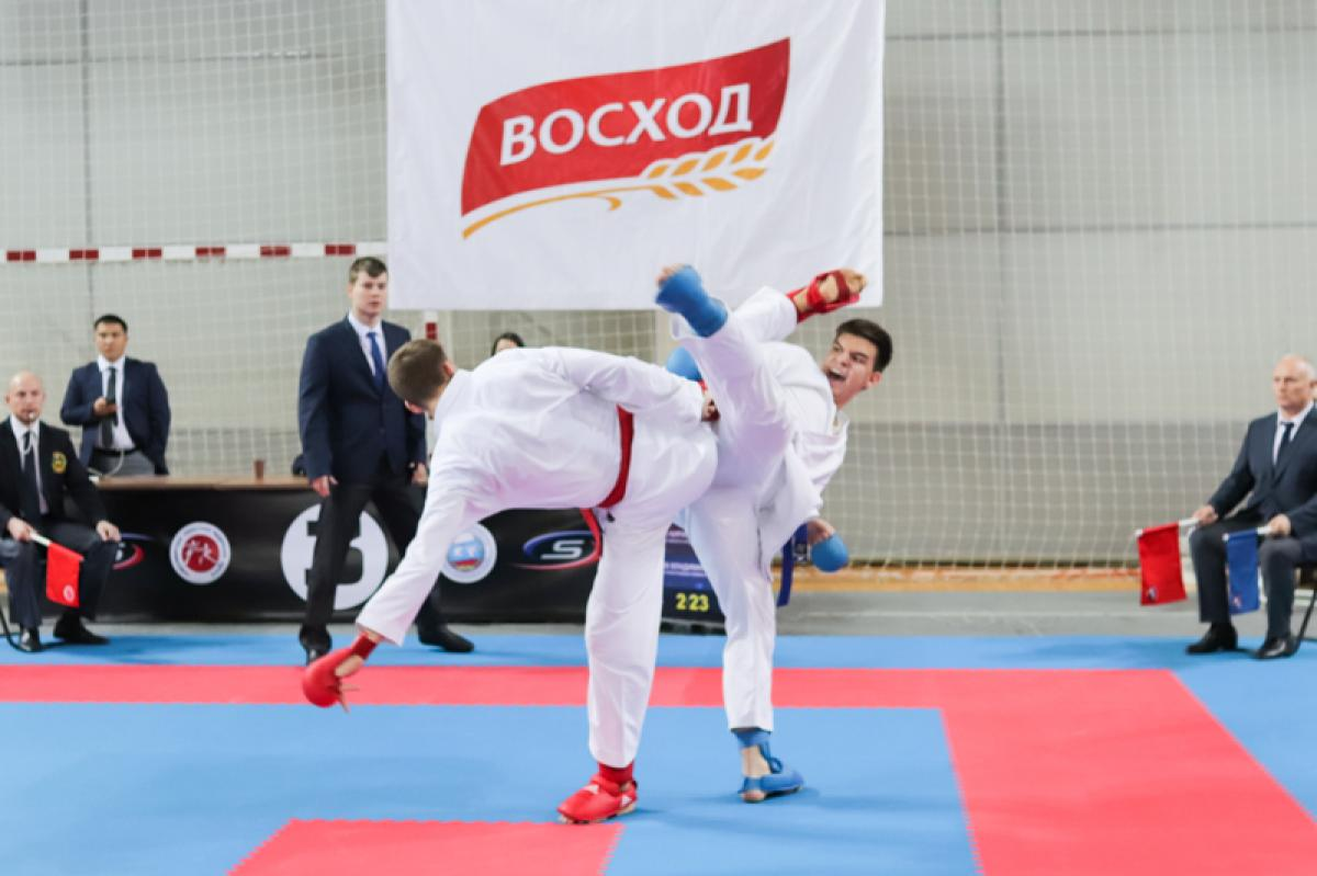 Кубок маршала Покрышкина по каратэ