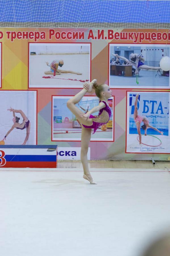 Межмуниципальные соревнования по художественной гимнастике памяти ЗТР А.И. Вешкурцевой