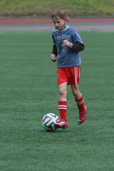 Кожаный мяч 2014